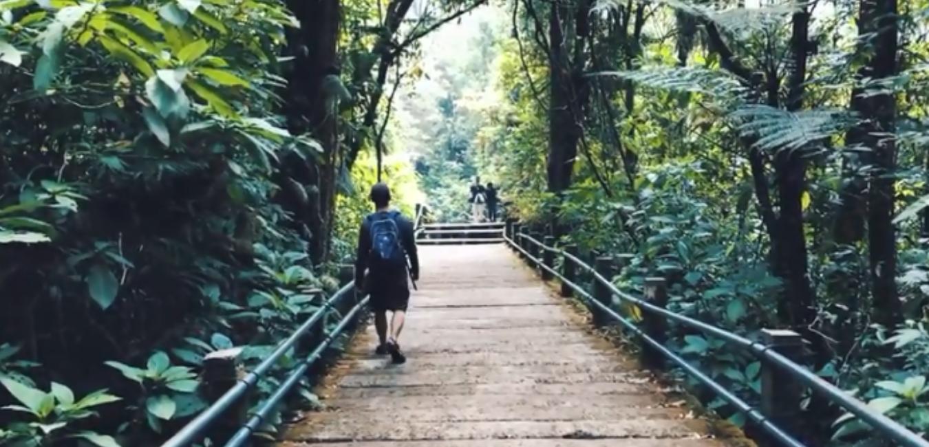 Wisata Curug Cibeureum Cibodas: Lokasi, Tiket Masuk dan Penginapan
