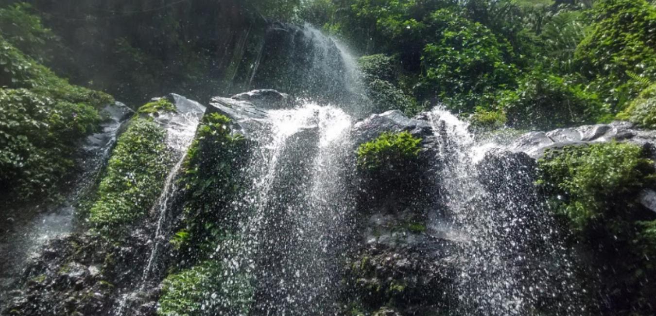 Curug Ciputri Tenjolaya Bogor: Tiket Masuk, Camping Ground dan Lokasi