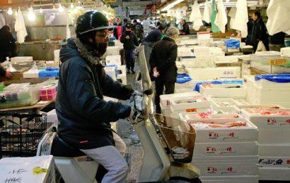 Jalan Jalan di Pasar Tsukiji di Jepang, Pasar Ikan Terbesar di Dunia