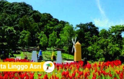 Asyiknya Rekreasi Keluarga di Taman Wisata Linggo Asri Pekalongan