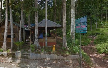 Istirahat Sambil Menyantap Menu Lezat di Lesehan Saung Hijau