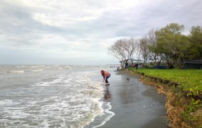 Wisata Alam Pantai Muara Beting, Kepingan Surga di Utara Bekasi